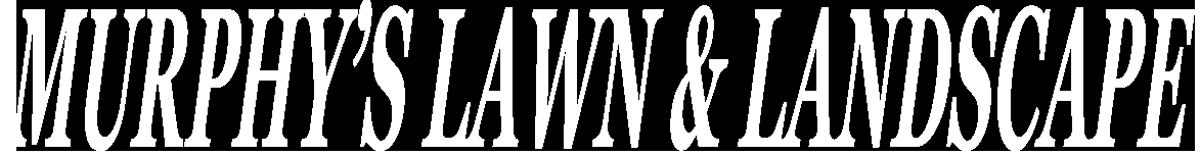logo-white-1200